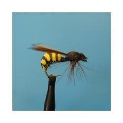 Shark's Wasp - 4 бр.